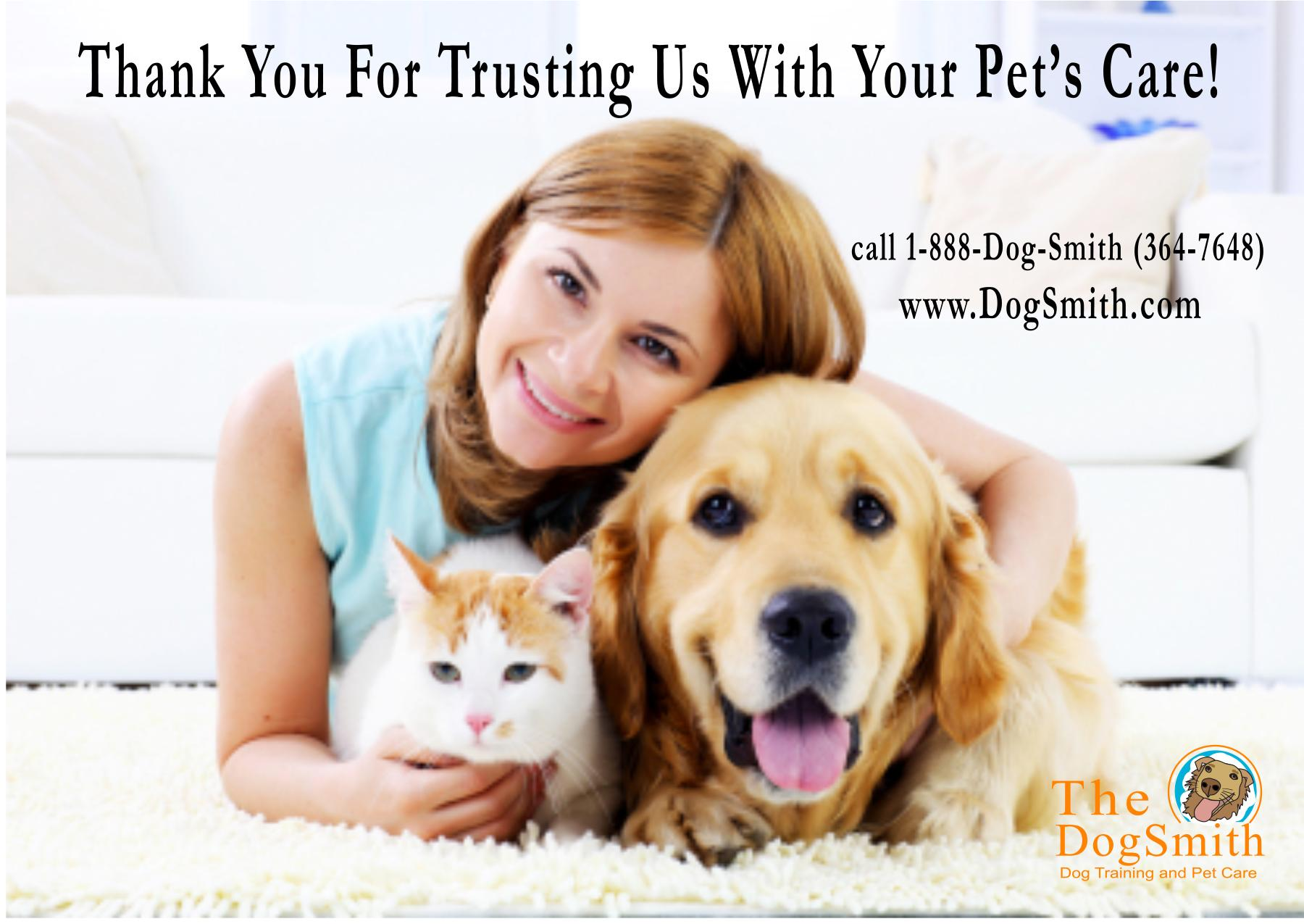 pet care the dogsmith