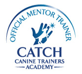 CATCH_Mentor