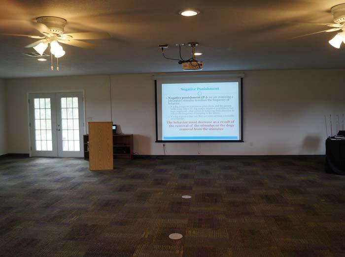 The-Presentation-Screen