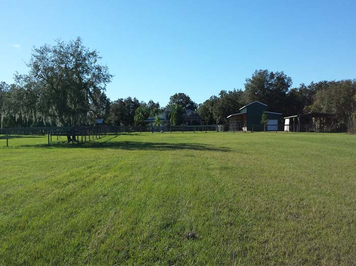Training-field