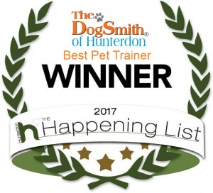 Winner 2017 DS Hunterdon _ Pet Trainernew