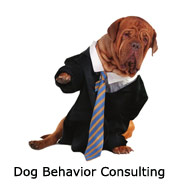 i-behavior-consult