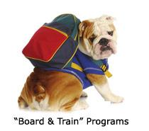 i-board-train