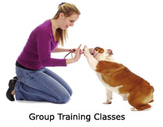 i-group-classes