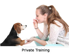 i-private-training