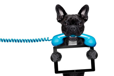 telephone-dog